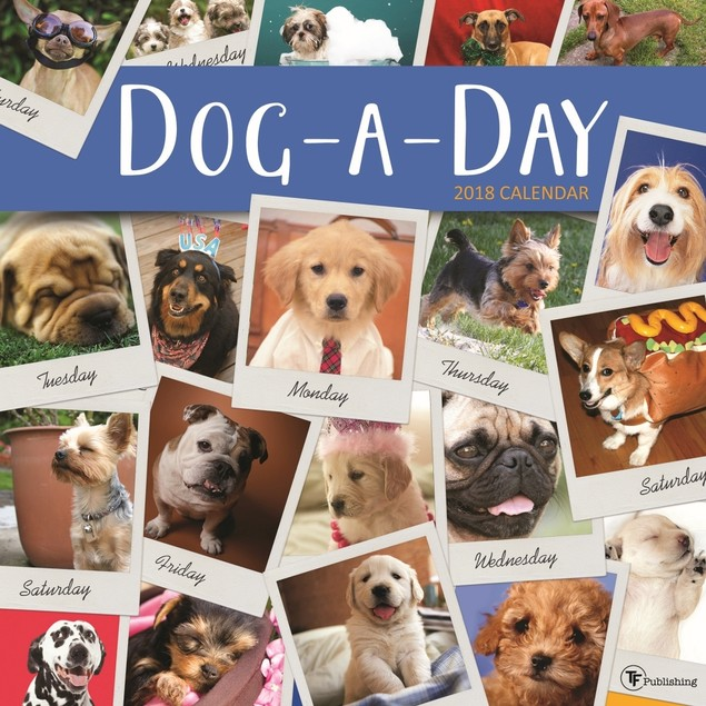Dog-A-Day Wall Calendar, Assorted Dogs by Calendars