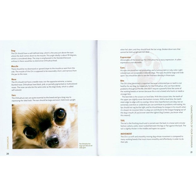 Animal Planet Chihuahua Book, Chihuahua by TFH Publications