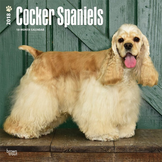 Cocker Spaniels Wall Calendar, Cocker Spaniel by Calendars