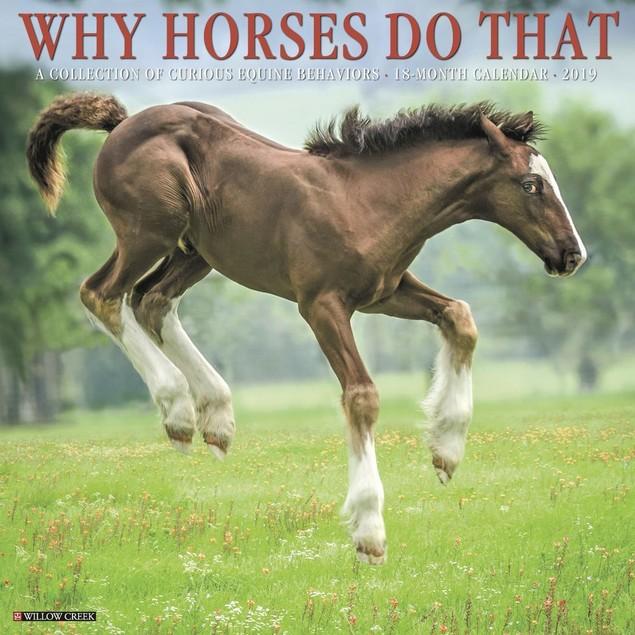 Why Horses Do That Wall Calendar, Horses by Calendars