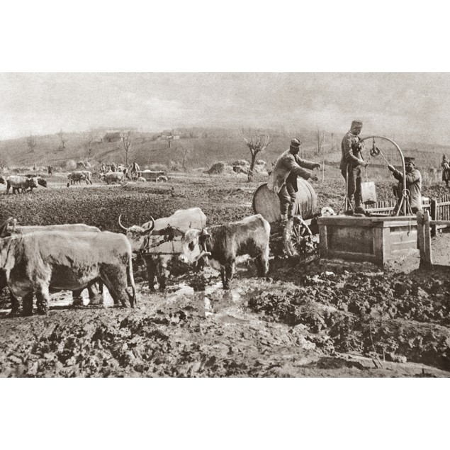 World War I: Serbia. /Ntroops Drawing Water From A Well Into Barrels, Which