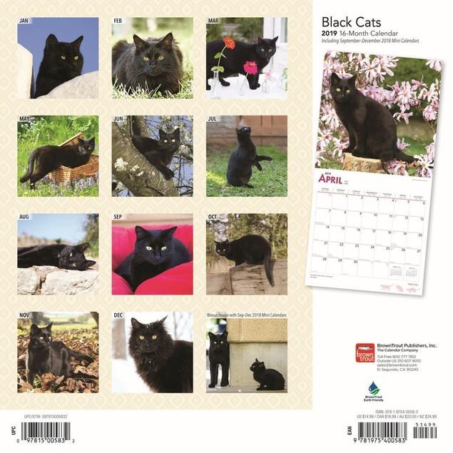 Cats Black Wall Calendar, Black Cats by Calendars