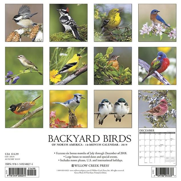 Backyard Birds Wall Calendar, Birds by Calendars