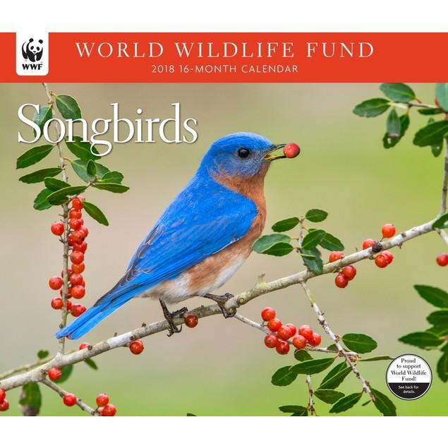 Songbirds WWF Wall Calendar