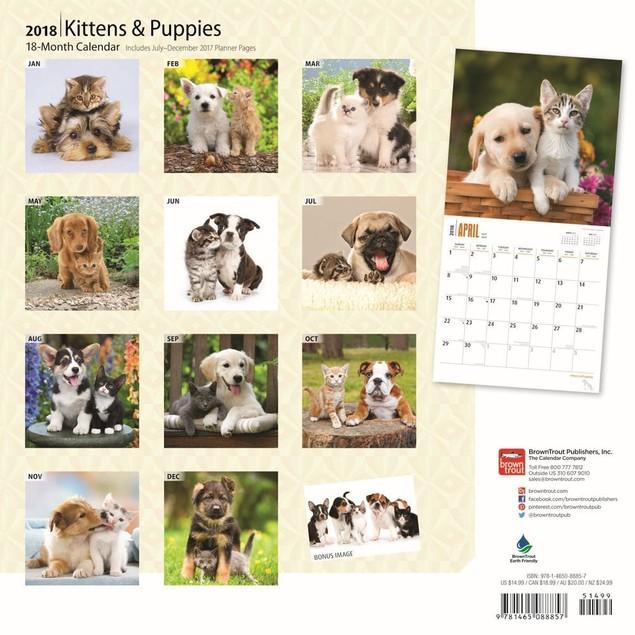 Kittens & Puppies Wall Calendar, More Dogs by Calendars