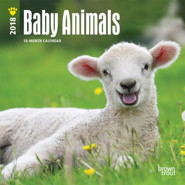 Baby Animals Mini Wall Calendar, Baby Animals by Avalanche Publishing