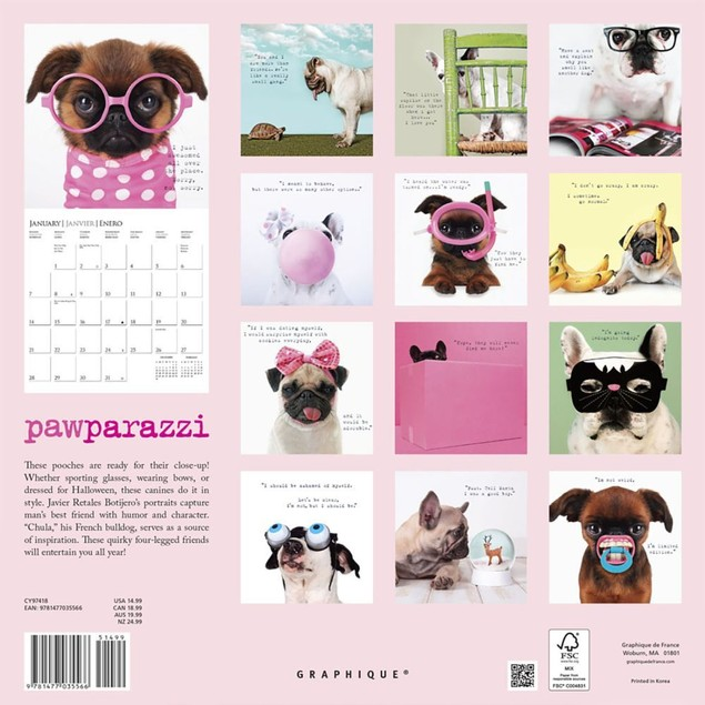Pawparazzi Wall Calendar, Funny Dogs by Calendars