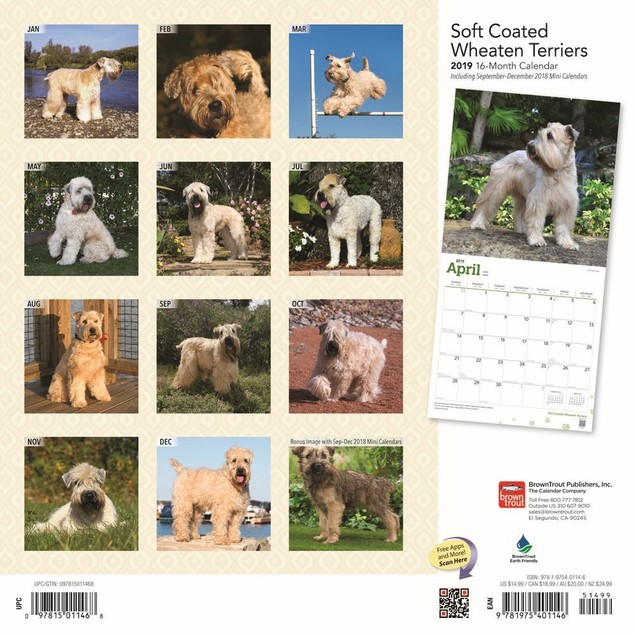 Wheaten Terriers Soft Coated Wall Calendar, More Dogs by Calendars
