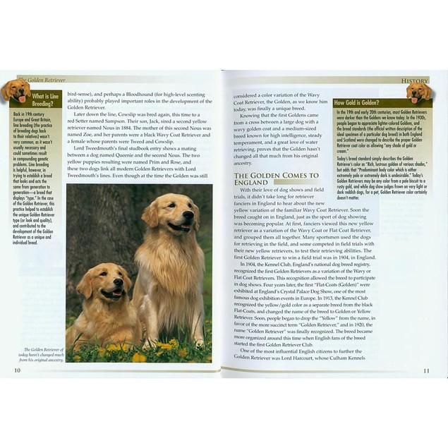 Terra Nova Golden Retriever Book, Golden Retriever by TFH Publications