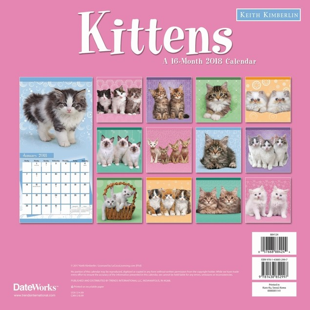 Keith Kimberlin Kittens Wall Calendar, Kittens by Calendars