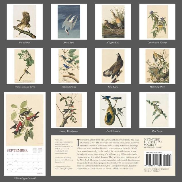 Audubons Watercolors Wall Calendar, Contemporary Art by Andrews McMeel