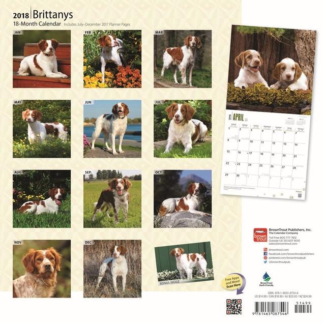 Brittanys Wall Calendar, Brittany by Calendars