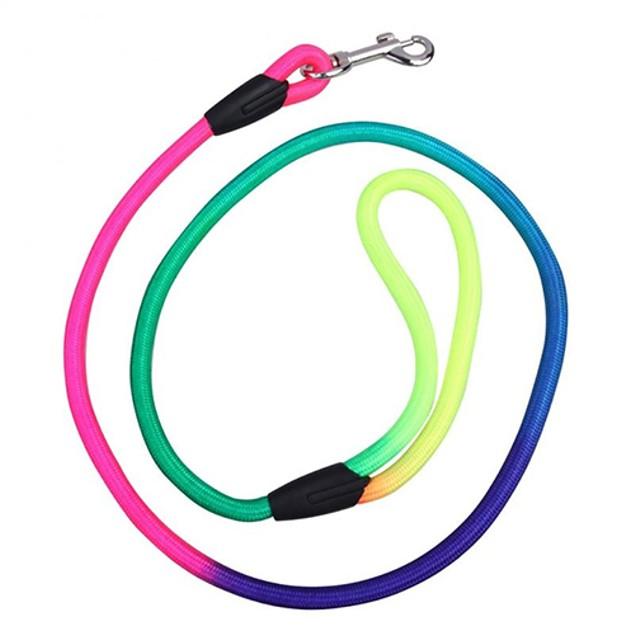 Rainbow Weave Nylon Leash