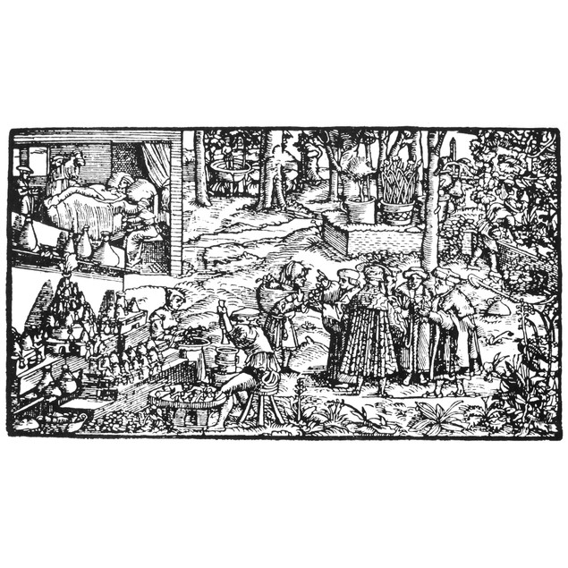 The Physic Garden, 1531. /Nwoodcut From Francesco Petrarca'S 'Trostspiegel,