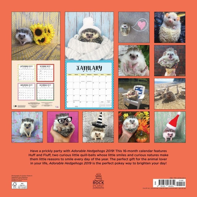 Hedgehogs Wall Calendar, Small Pets by Calendars