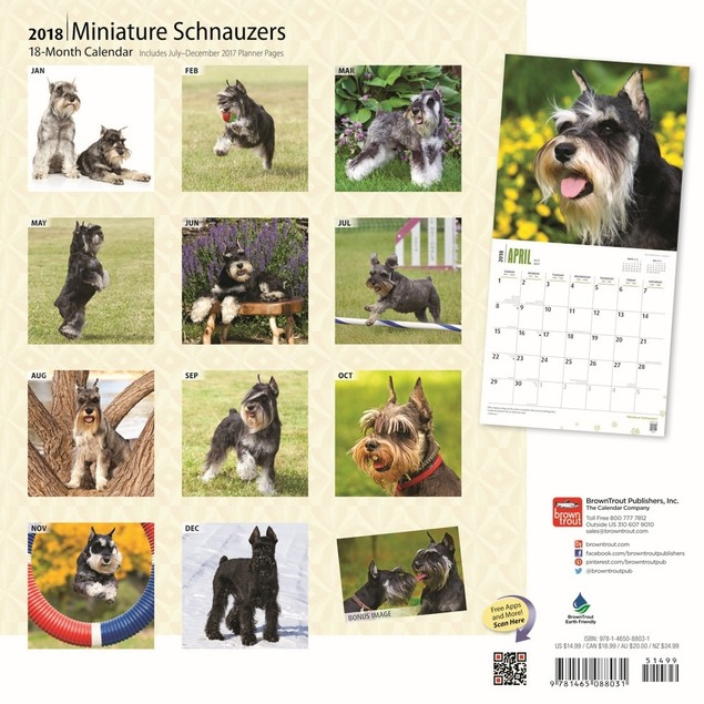 Schnauzers Miniature Wall Calendar, Schnauzer by Calendars
