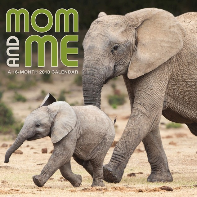 Mom And Me Wall Calendar, Baby Animals by Calendars