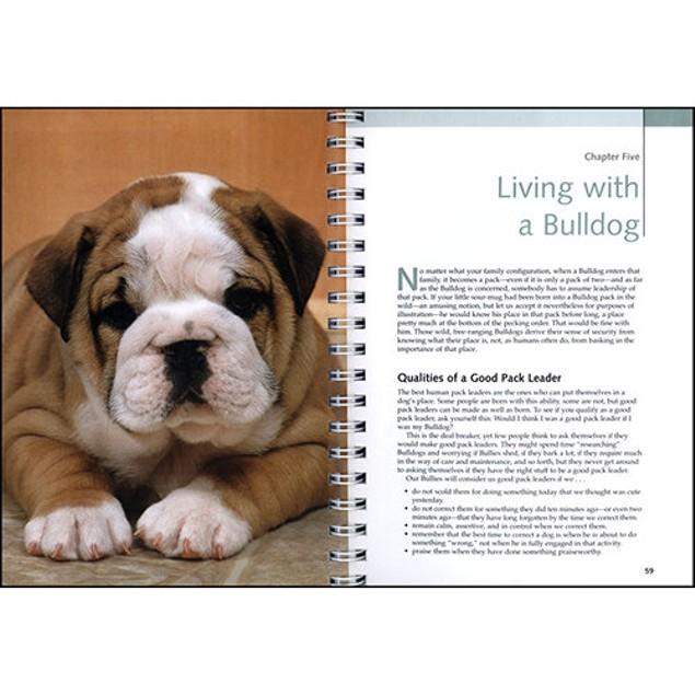 Bulldogs Barron's Dog Bible, Bulldog by Barrons Educational Series Inc