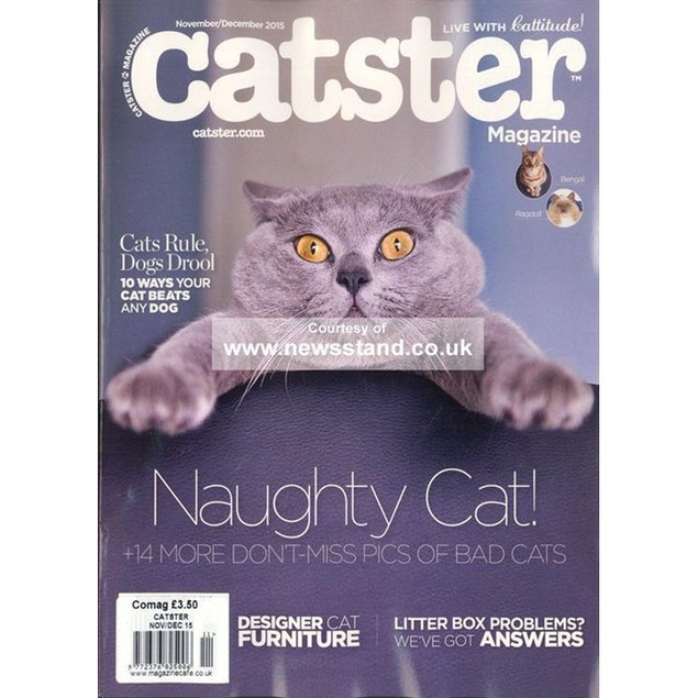 Catster Magazine Subscription