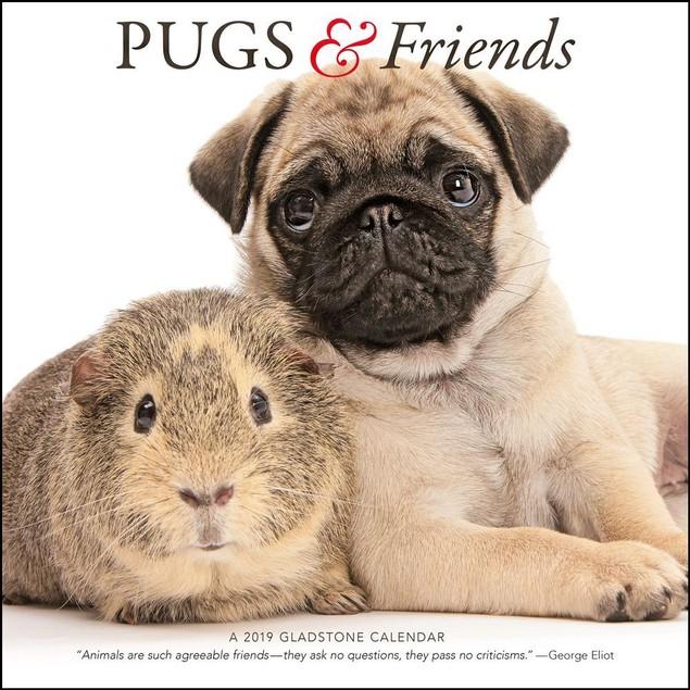 Pugs And Friends Wall Calendar, Pug by Calendars