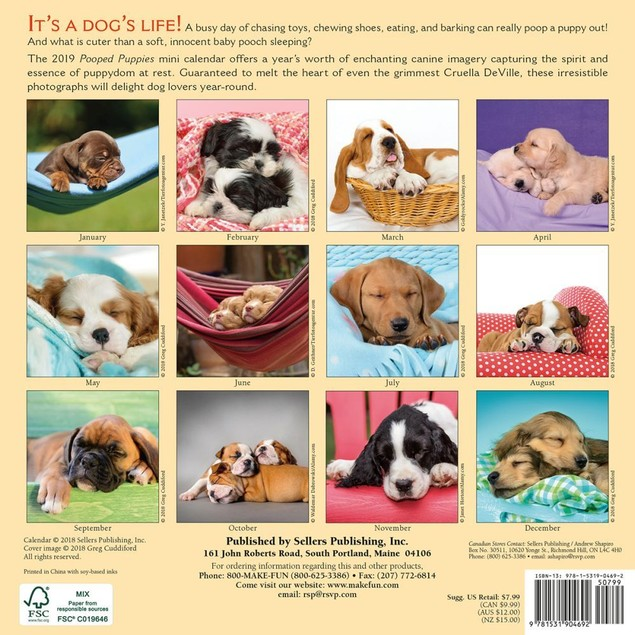 Pooped Puppies Mini Wall Calendar, Cute Puppies by Calendars