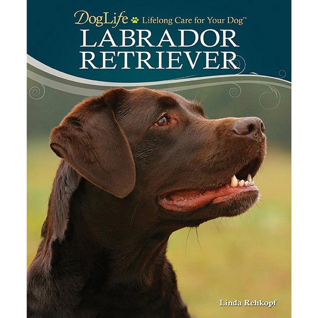 Labrador Retriever Book, Labrador Retriever by TFH Publications