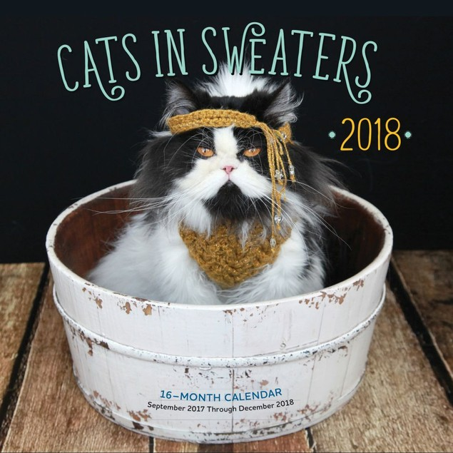 Cats in Sweaters Mini Wall Calendar, Funny Cats by Quarto