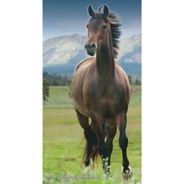 Horses Pocket Planner, Horses by Calendars