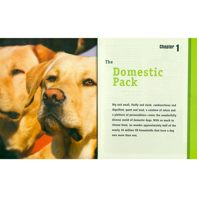 Animal Planet Multiple-Dog Family Book, Assorted Dogs by TFH Publications