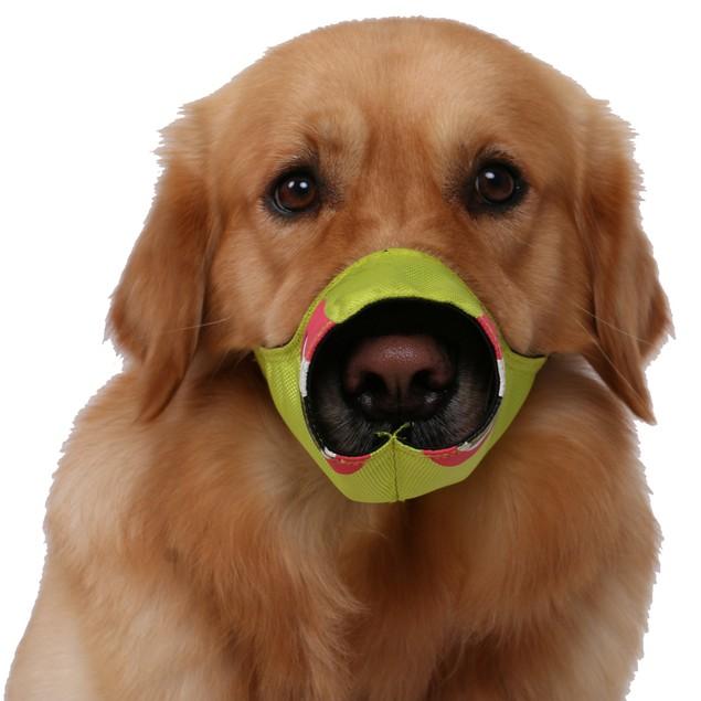 Pet Life Fumigation Adjustable Designer Dog Muzzle