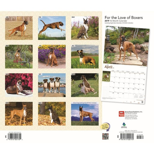 Boxers Wall Calendar, Boxer by Calendars