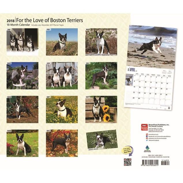 Boston Terriers Deluxe Wall Calendar, Boston Terrier by Calendars