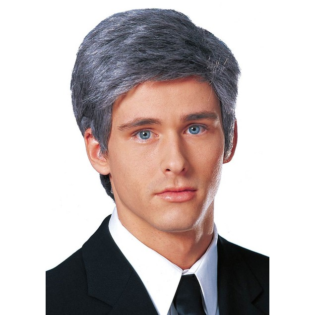 Commander In Chief Gray Adult Wig