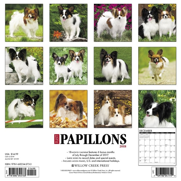 Just Papillons Wall Calendar, Papillon by Calendars
