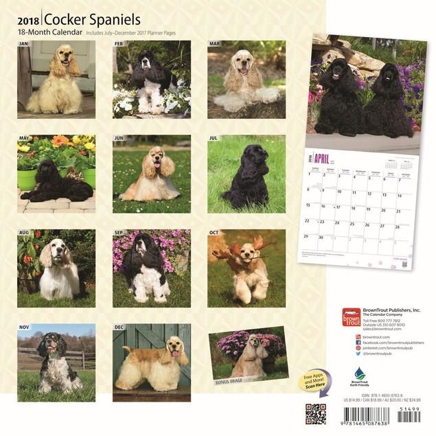 Cocker Spaniels Wall Calendar, Cocker Spaniel by Calendars