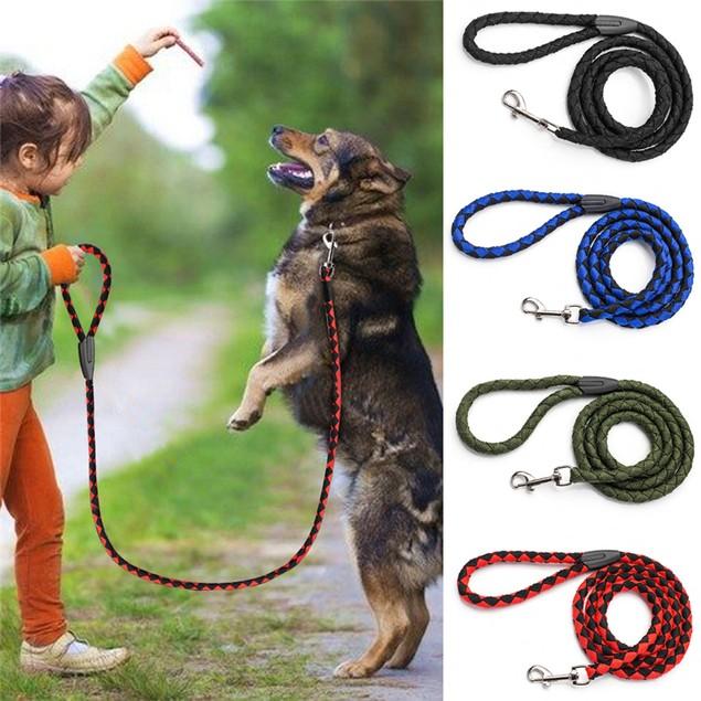 Pet Nylon Braided Dog Leash