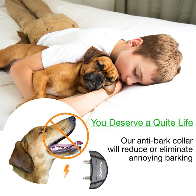 Ownpets Harmless Dog No Bark Collar for Anti Barking Control Collars
