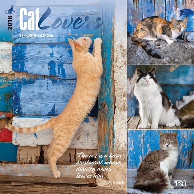 Cat Lovers Wall Calendar, Assorted Cats by BrownTrout
