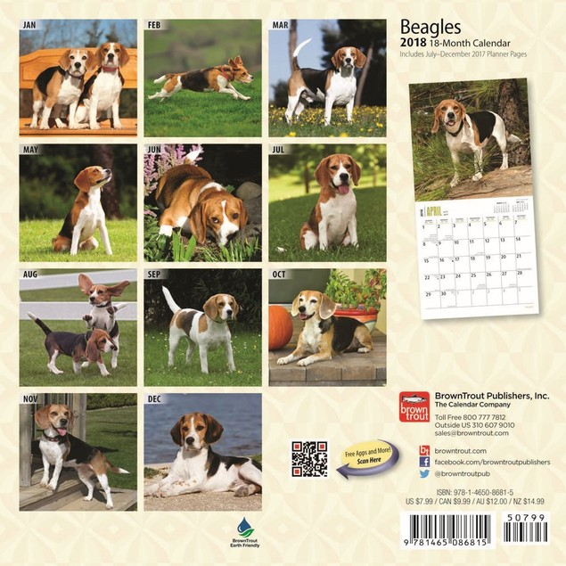 Beagle Mini Wall Calendar,  by BROWNT
