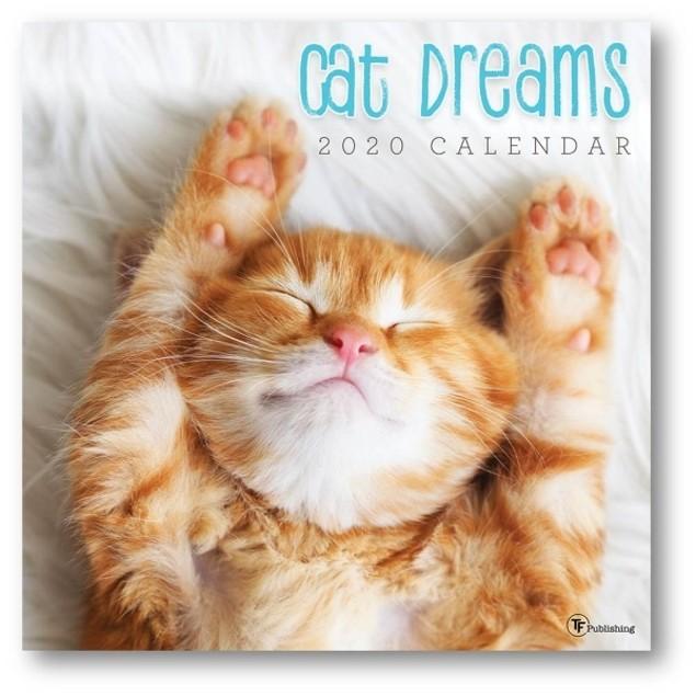 Cat Dreams Wall Calendar, Assorted Cats by Calendars