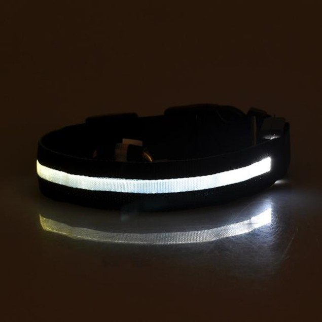 Glowing LED Pet Collar