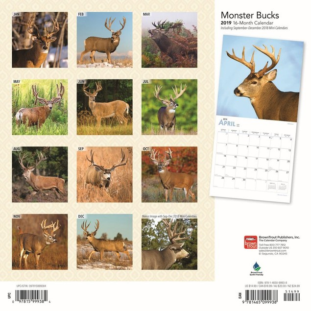 Monster Bucks Wall Calendar, Deer by Calendars
