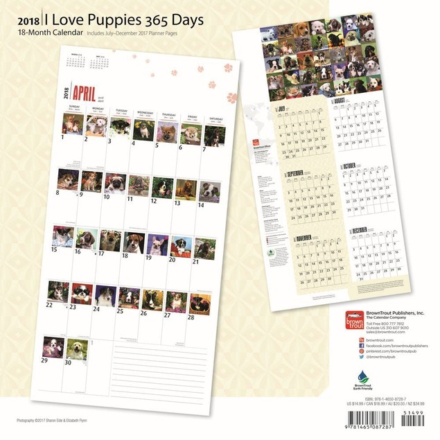 I Love Puppies 365 Days Wall Calendar, Cute Puppies by BrownTrout