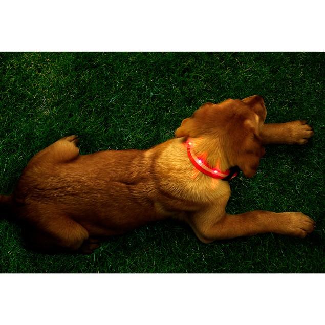 "Simple Pet 17"" LED Glow in the Dark Dog Pendant Collar"