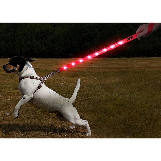Simple Pet 4FT LED Dog Leash
