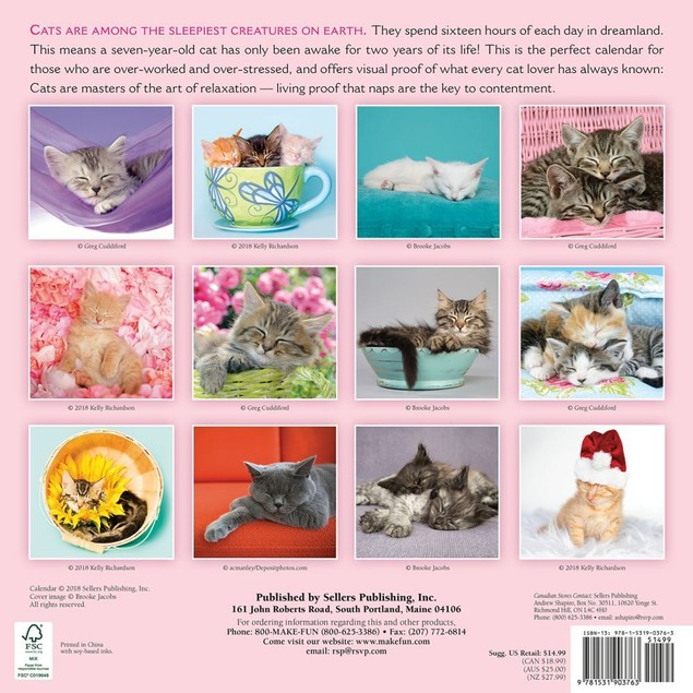 Cat Naps Wall Calendar, Assorted Cats by Calendars