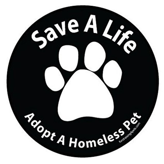 Save A Life Adopt a Homeless Pet Magnet Dog Gift Car Auto