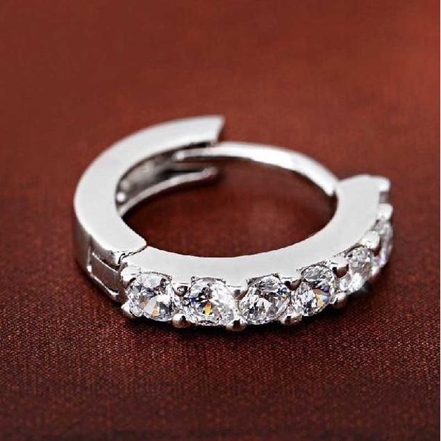 Sterling Silver Rhinestones Hoop Diamond Stud Earrings for Women