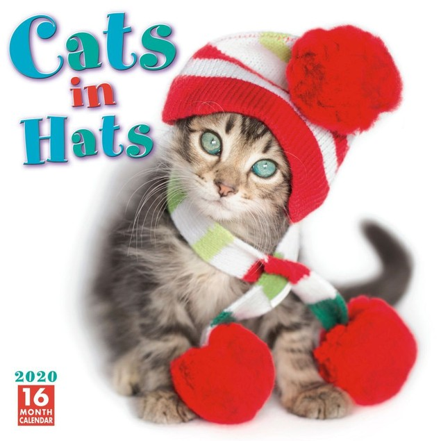 Cats in Hats Wall Calendar, Funny Cats by Calendars