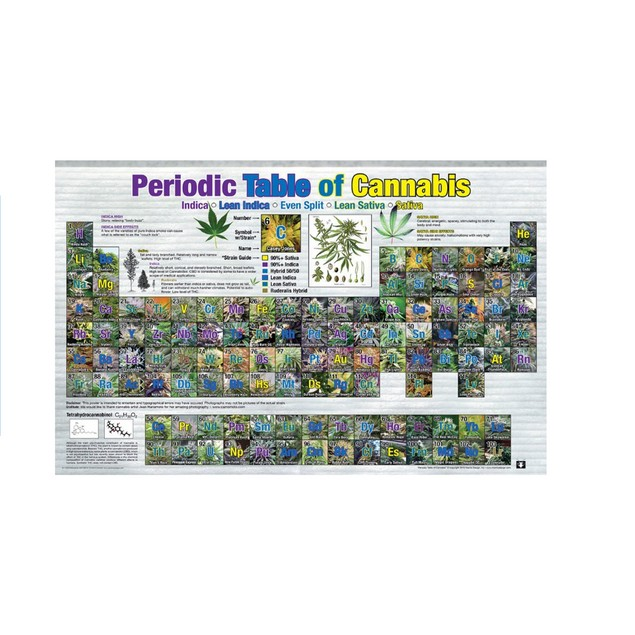 "Periodic Table of Cannabis Poster Pot Marijuana Elements 24"" x 36"""